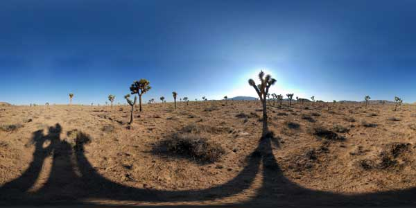 parc national de joshua tree en californie, panorama 360°
