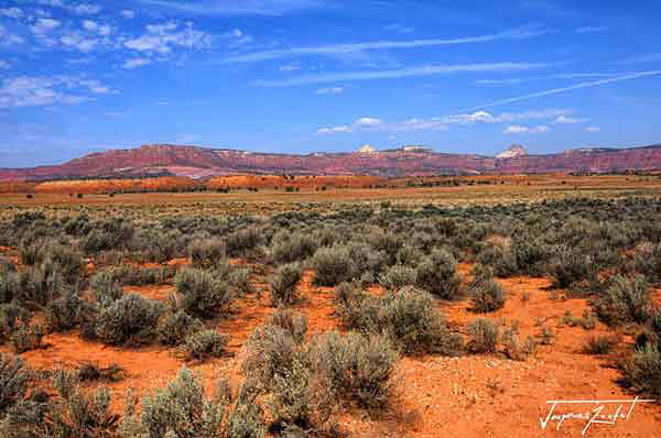 Arizona,  With an area of 295,254 km2, it is the 6th largest US state