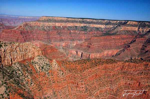 Aerial view of the Grand Canyon with the Colorado, Arizona