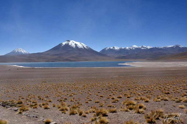 Photo du Chili, l'altiplano andin, 4200 m