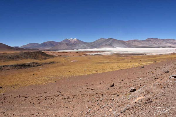 Photo of Chile, lagunas altiplanicas, 4200 m