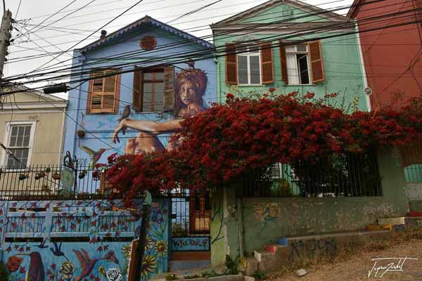 Photo of Chile, the painted houses of valparaiso