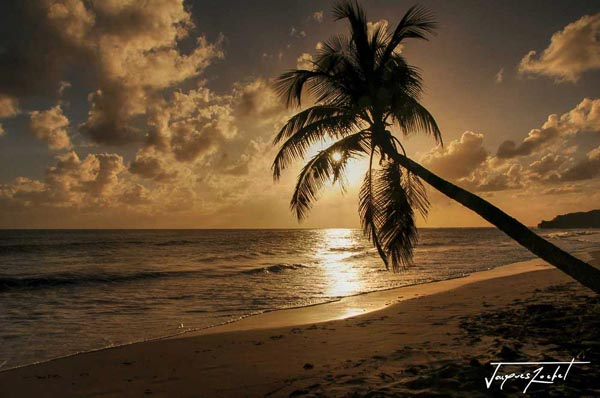 Sunset on a beach in Martinique, French West Indies