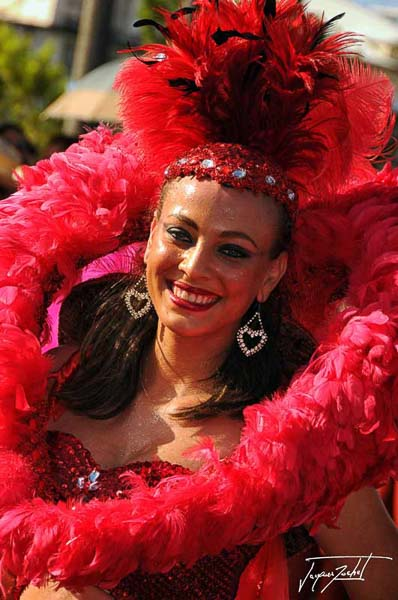 the carnival of fort de france in martinique, French West Indies, Caribbean