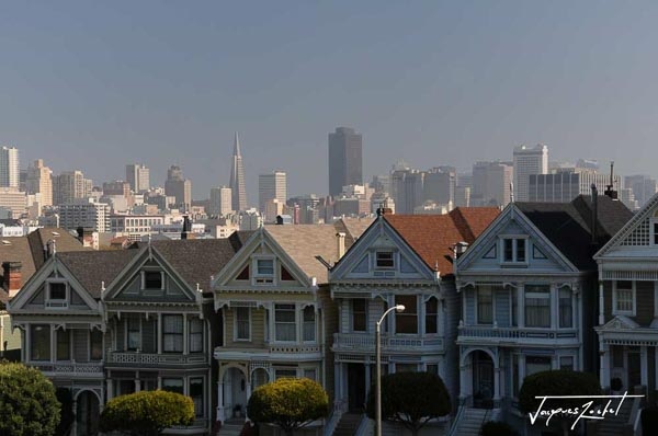 The Painted ladies of San Francisco in front of Alamo Square Park, downtown in the distance, california